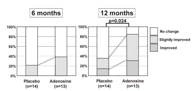 女性の薄毛とアデノシンによる改善効果